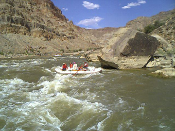 whitewater in cataract canyon
